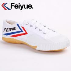 Promo Feiyue Retro Classic Running Shoes White Intl