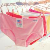 Discount Gogolife 10Pcs Women Candy Colors Cotton Panties Oem China