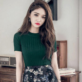 Price Comparisons For Korean Style Knit Spring And Summer Top Base Shirt Dark Green