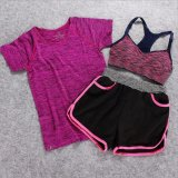 Cheap Ladies S Sportswear Running Suit Yoga Clothes Fast Dry Three Piece Include T Shirts、sports Bras、shorts Suitable For Fitness、zumba、yoga And Jogging Intl