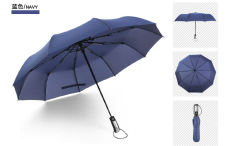 Price Simple Compact 2 Person 10 Rib Automatic Tri Fold Umbrella Blue Blue On China