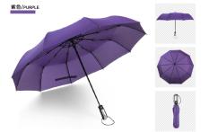 Sale Simple Compact 2 Person 10 Rib Automatic Tri Fold Umbrella Purple Purple Oem