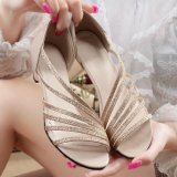 Cheapest Moonar New Sandals Women Low With Hollow Solid Color Round Casual Shoes Gold Intl Online