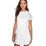 New Arrival Round Neck Closed Fit Woman Perspective Lace Dress White Intl For Sale Online