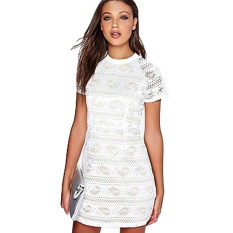 Best Deal New Arrival Round Neck Closed Fit Woman Perspective Lace Dress White Intl