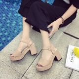 New Korean Fashion Women S Sandals High Heels Block Heels Platform Velvet Wedge Heels Concise Casual Color Apricot Intl For Sale Online