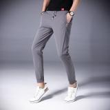 Review Stylish Summer Slim Fit Ankle Length Harem Pants Men Pants Gray Oem