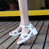 Wholesale Summer Rough Sandals Woman Open Toe Fish Mouth High Heel Outdoor Platform Shoes Intl