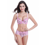 Who Sells Varsbaby Women S S*xy Flower Embroidery Push Up Adjustable Bra Set Pink Cheap