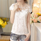Discount Versatile White Slim Fit Short Sleeved Top Lace Top