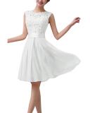 Women Lace Sleeveless Party Princess Wedding Formal Mini Dress Price Comparison