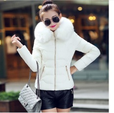 Womens Winter Jackets And Coats 2016 Women S Parkas Thick Warm Faux Fur Collar Hooded Anorak Ladies Jacket Female Manteau Femme Intl Lower Price