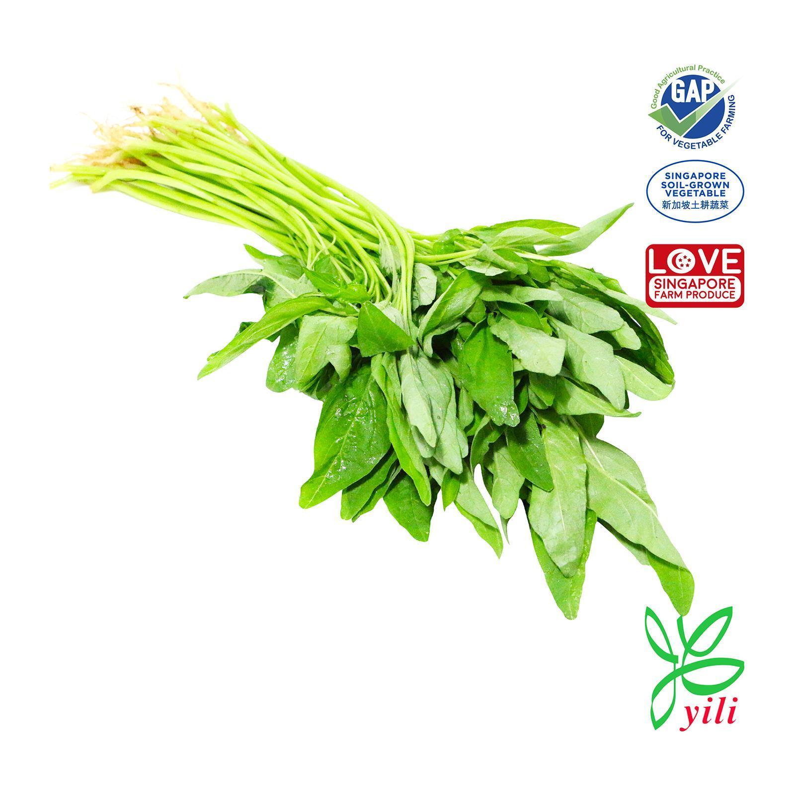 YILI Sharp Spinach