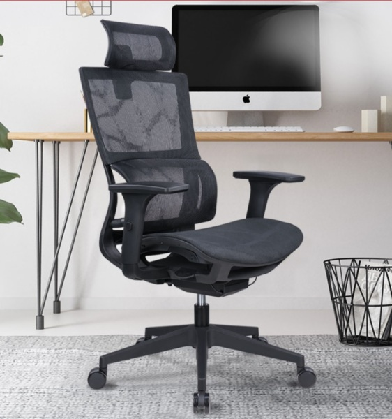 Premium Ergonomic Computer Chair with Intelligent Lumbar Support - OC233AQW - Ship in 2 days - Warranty for 5 Years Singapore