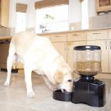 Coupon 5 5 Litres Automated Pet Feeder Machine For Dogs Cats Rabbits