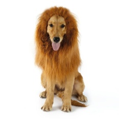 Befu Pet Costume Dog Lion Wigs Mane Hair Scarf Clothes For Party Halloween Festival - Intl By Befubulus.