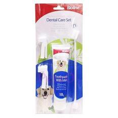 Bioline Dental Care Set 100g -Mint Flavour By Petso2