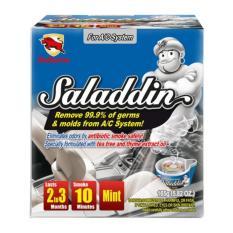 Wholesale Bullsone Saladdin Car Fumigation Deodorizer Mint For A C System 165G 5 82Oz Car Aircon Servicing