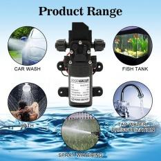 Sale Dc12V 70W 130Psi 6L Min Water High Pressure Diaphragm Self Priming Pump Scr*w Thread Type Intl