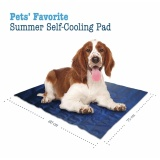 Foldable Pet Dog Cooling Gel Pad Mat For Travel Floor Couch Car Seat Pet Bed Kennel Intl Best Buy