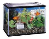 Sale Gex Goldfish Room Black M Singapore Cheap