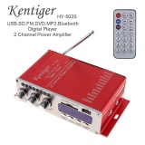 Buy Hy 502S 2 Ch Hi Fi Bluetooth Digital Audio Player Car Amplifier Fm Radio Stereo Player Support Sd Usb Mp3 Dvd Input Intl Oem Original