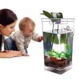 Wholesale My Fun Fish Complete Self Cleaning Miniature Fish Tank Aquarium Gift For Kid Intl
