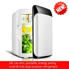 Best New Mini Mini Fridge Dormitory Small Family Home Car Dual Use 10L Large Capacity Cold Hot Dual Purpose Refrigerator Intl