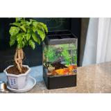 Discount Square Self Cleaning Fish Tank Free Water Lazer Mini Acrylic Plastic Cylinder Desk Transparent Bucket Fish Tank