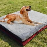 Sales Price Teddy Pet Dog Coaster Golden Vip Pet Nest Pad