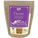 Review Wishbone Ocean Salmon Fish 4Lbs On Singapore