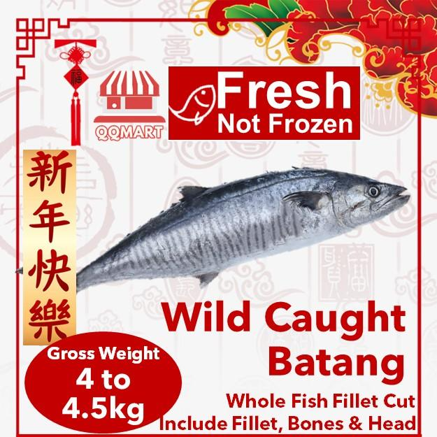 Fresh Wild Caught Whole Spanish Mackerel (batang) 4 To 4.5kg (fillet Cut) By Qqmart.
