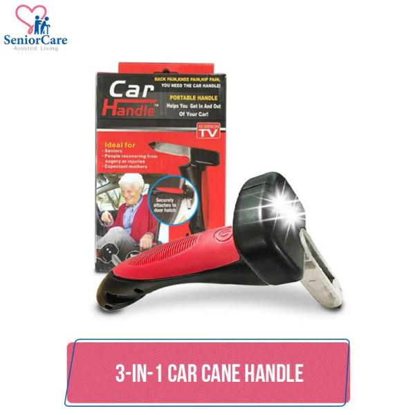 Buy 3-In-1 Car Cane Handle Support Holder Transport Make It Easier to Get In & Out of Any Cars Elderly Pregnant Handicap Surgery Singapore