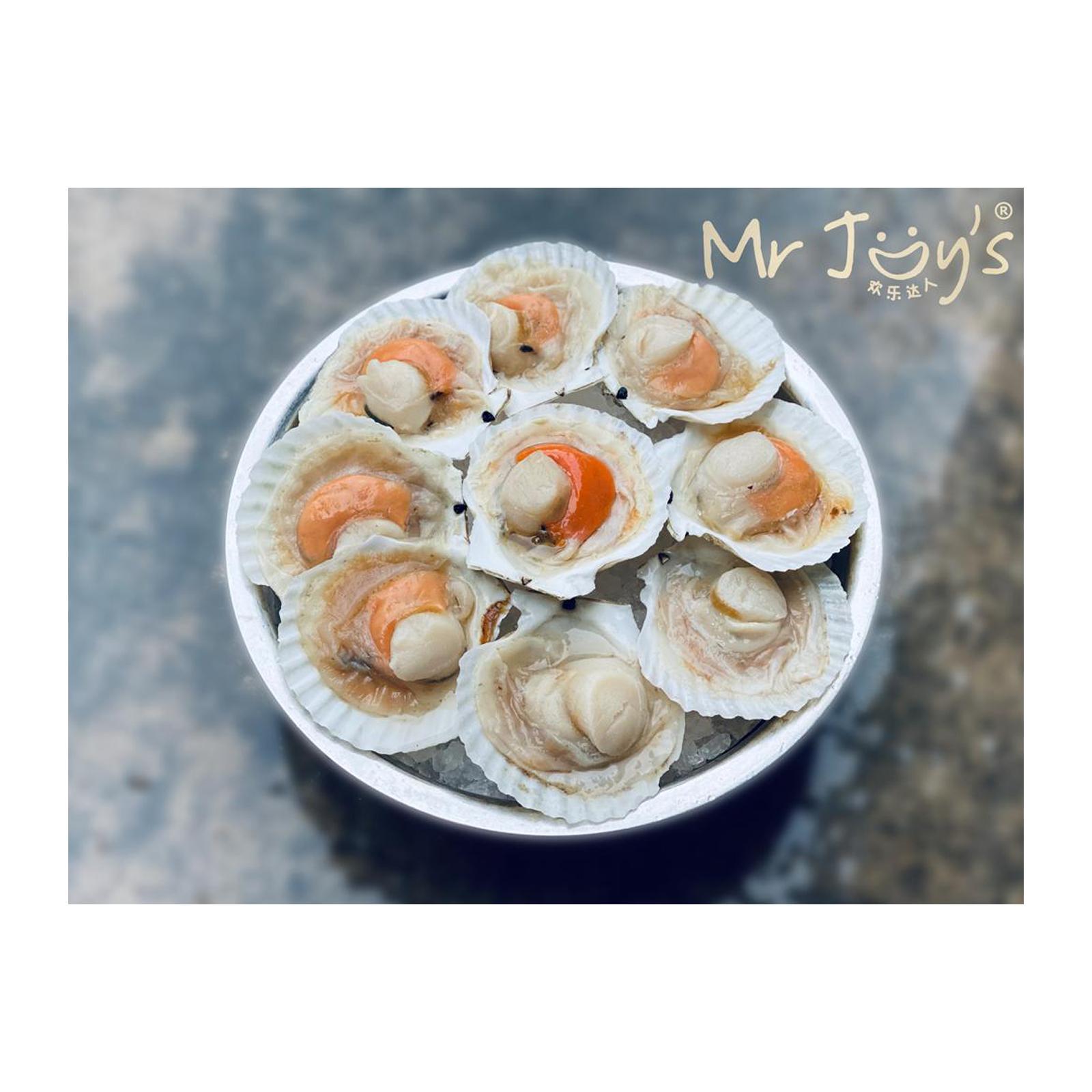 JHF Seafood Frozen Scallop Half Shell 9/10 cm