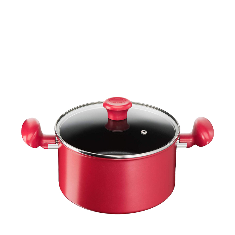 Tefal G13545 So Chef Stewpot 22cm with Lid 2100112231 Singapore