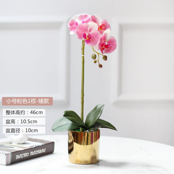 Handfeel Moisturizing Butterfly Orchid Imitation Flowers Decoration Artificial Flowers Corsage Living Room Asian Creative Luxury Art Works Teapoy Table Light Luxury can zhuo hua Decoration Flower