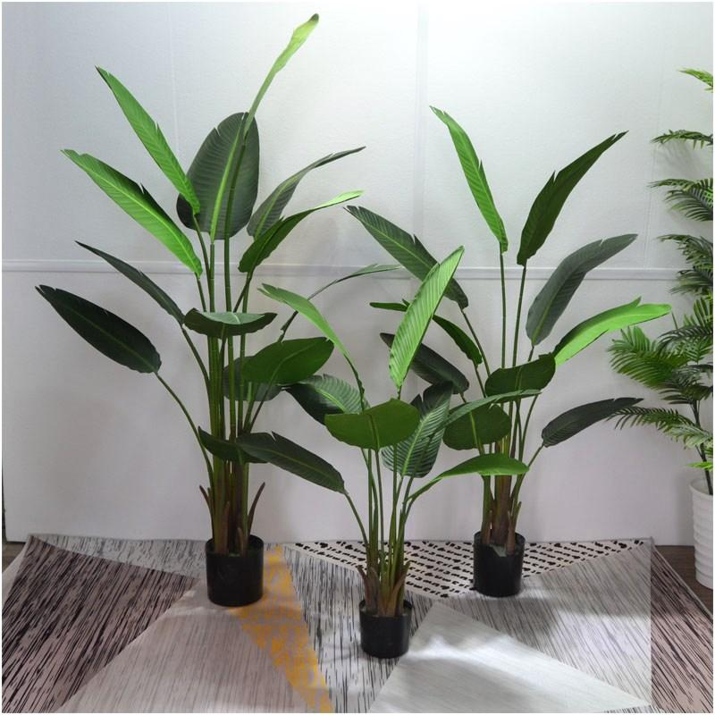New Products Model Northern Europe 58 Torrid Zone Green Plant Banana BANANA Ravenala Bird of Paradise Monstera Leaf qin ye