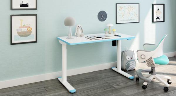 Ergonomic Student Standing Desk (CD101)