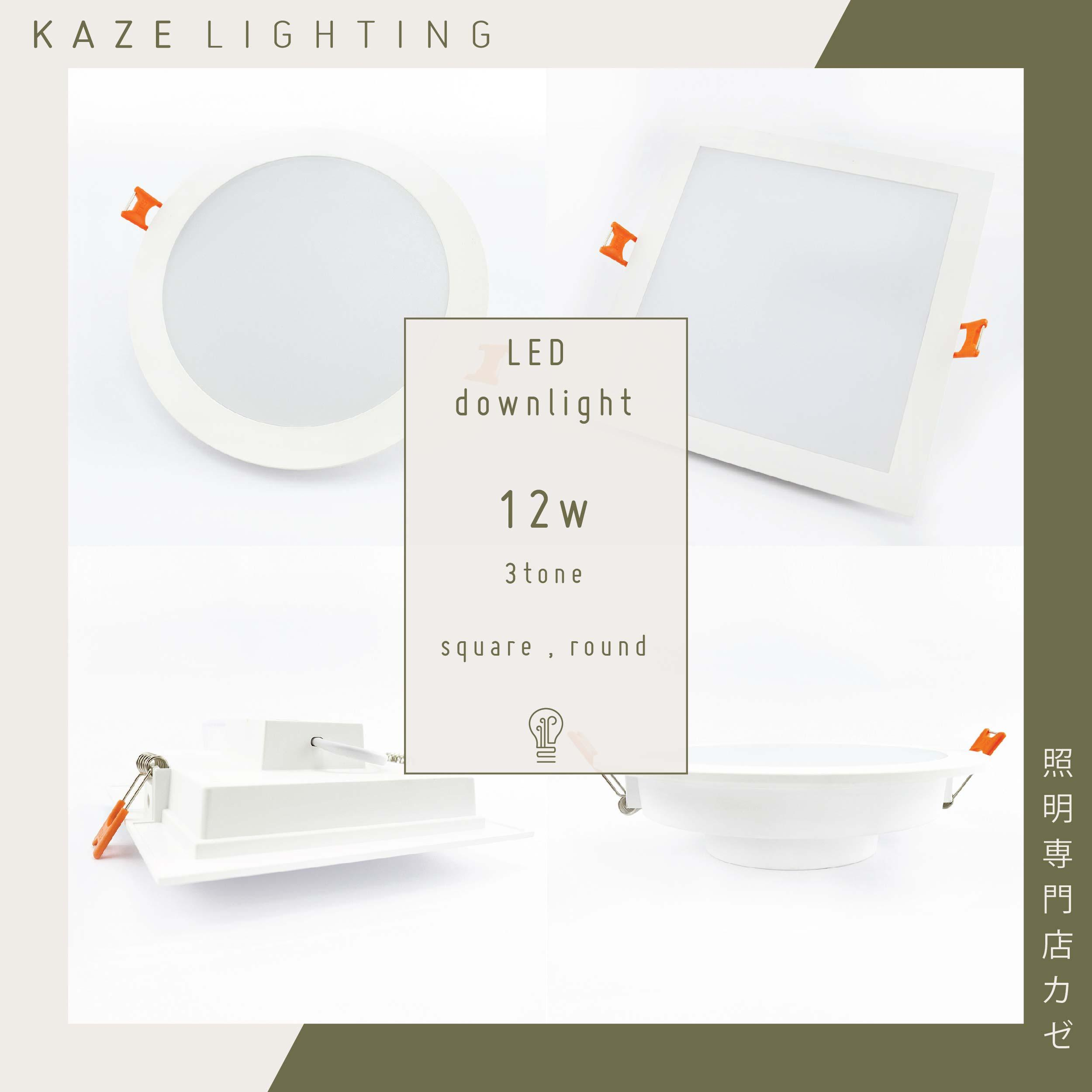 2Pcs Feel Lite LED Downlight 12w 3 Tone RGB