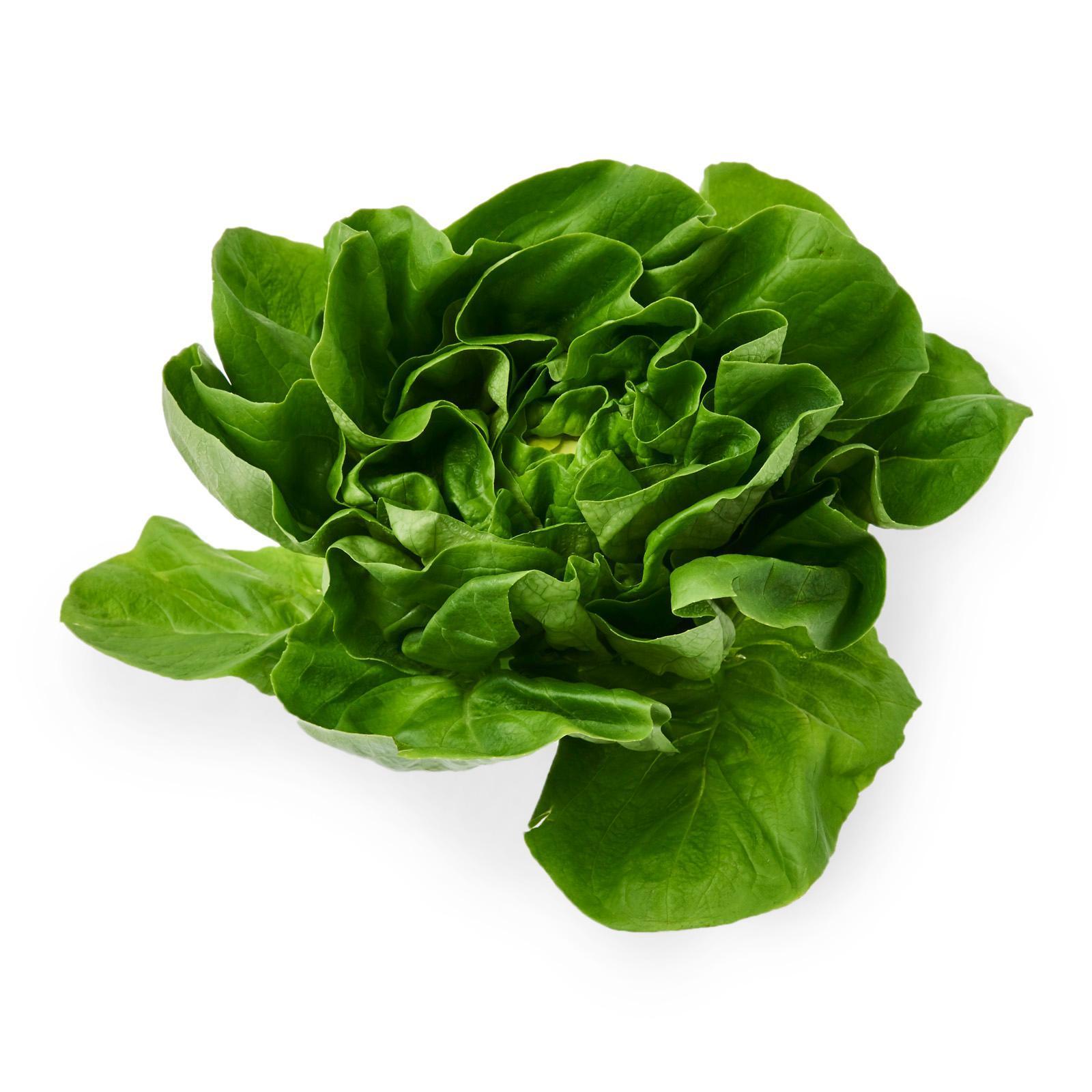 Kirei Japanese Fresh Vegetable Salad