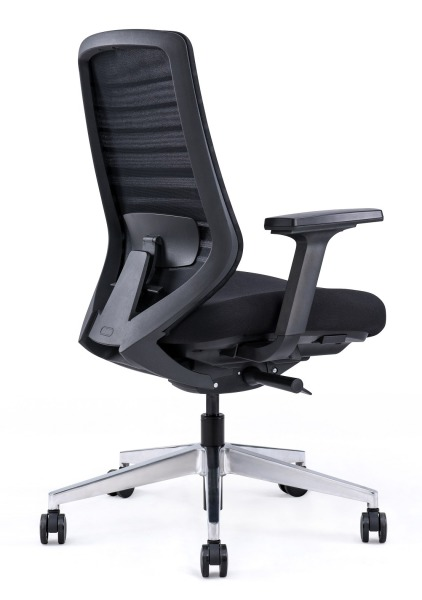 Sparta Warrior multi function Ergonomic Computer Chair! -BIFMA Test , Highest Standard Computer Chair Singapore