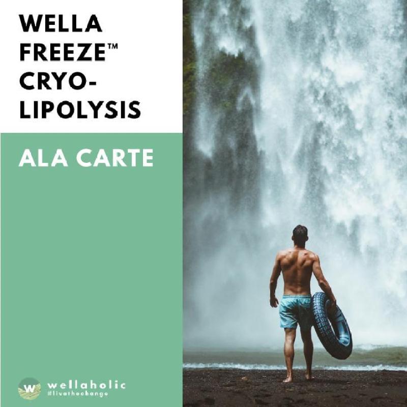 Buy WellaFreeze Fat Freeze Cryolipolysis (3 Sessions) Singapore