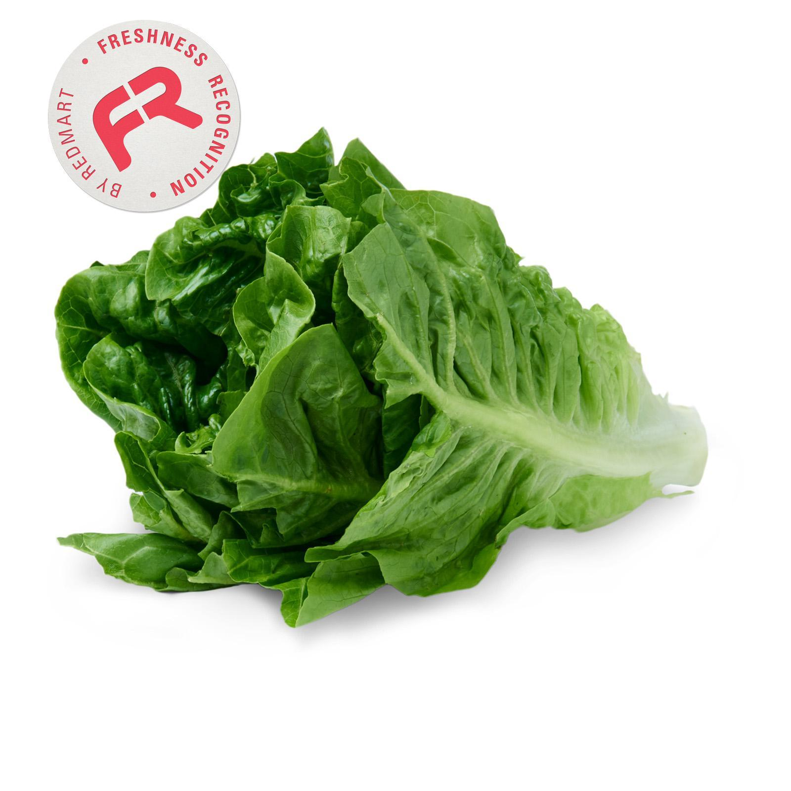 Givvo Romaine Lettuce By Redmart.