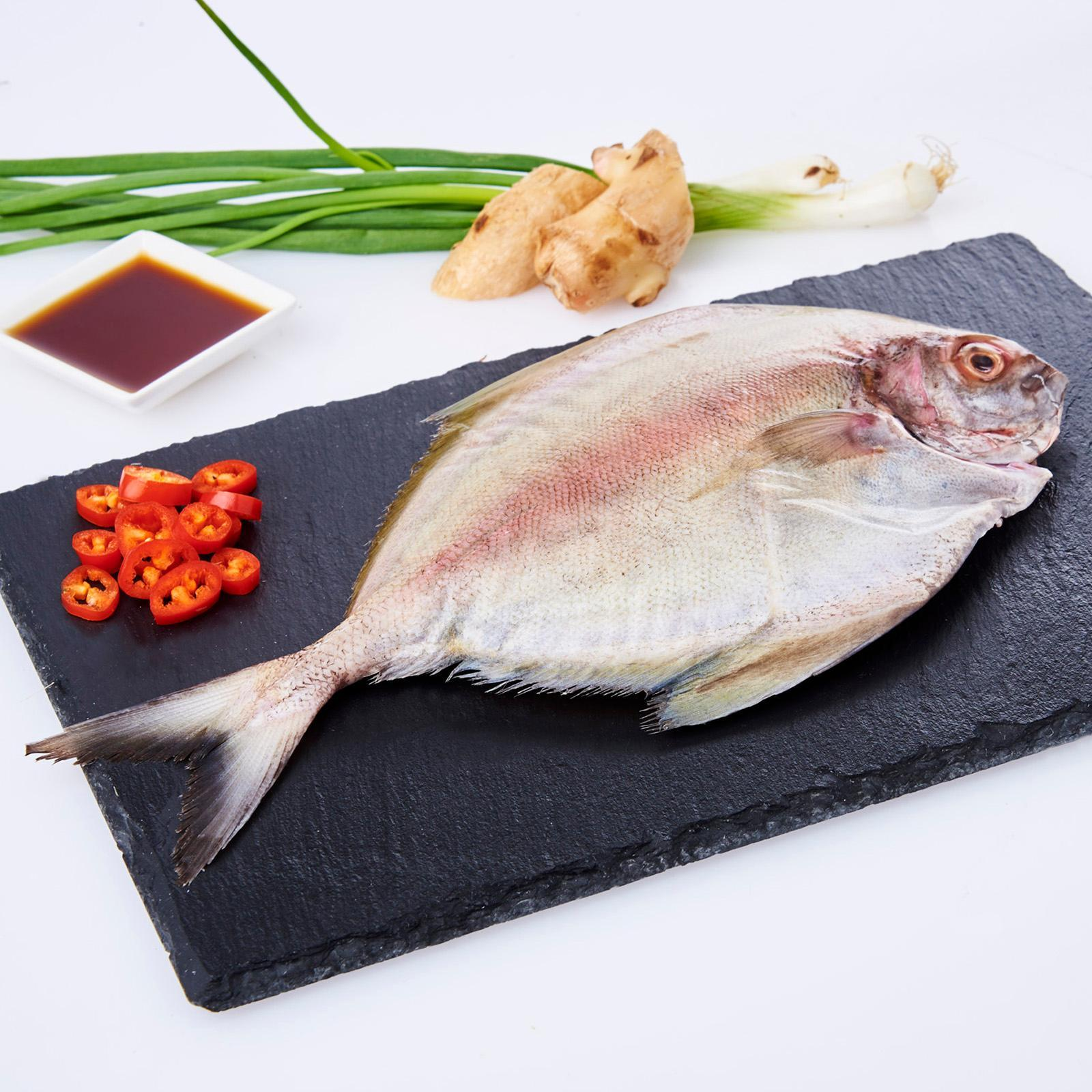 Serve by Hai Sia Seafood - Fresh Black Pomfret (Clean and Gutted)