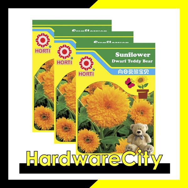Horti Flower Seeds Sunflower Dwarf Teddy Bear (3 PACKETS) [HWC-076]