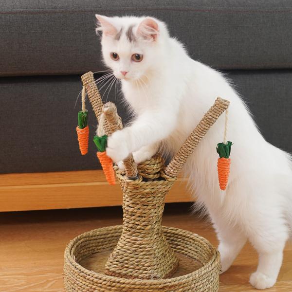 1 Cái Khung Leo Cho Mèo Cưng Trụ Cào Chống Mài Mòn Cho Mèo Dụng Cụ Mài Móng Với Mặt Dây Chuyền Cà Rốt, Đồ Nội Thất Leo Trèo Cho Mèo Con Mèo Con