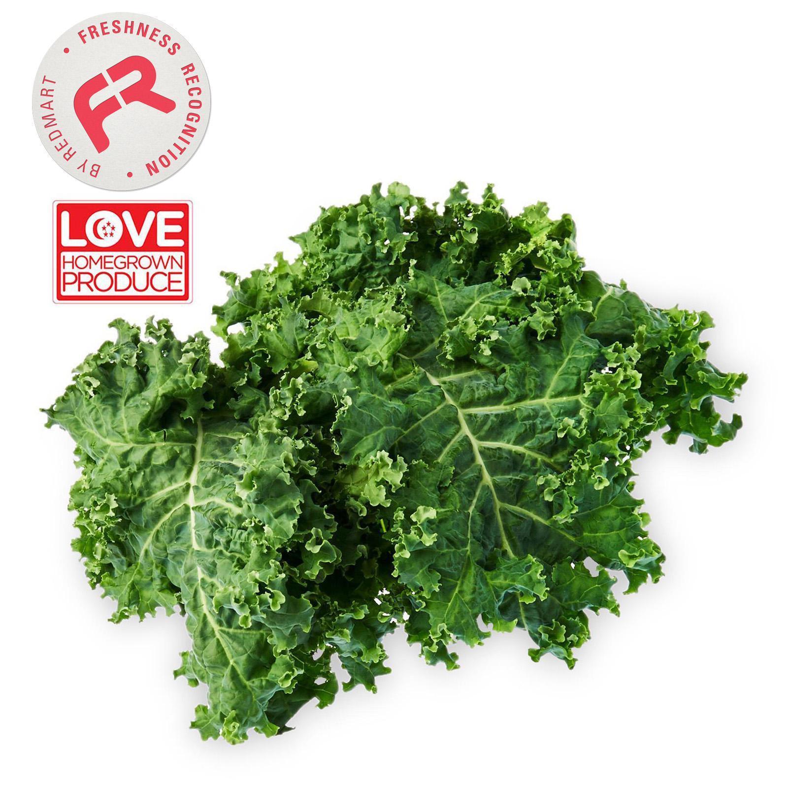 Sustenir Fresh Kinky Green Curly Kale By Redmart.