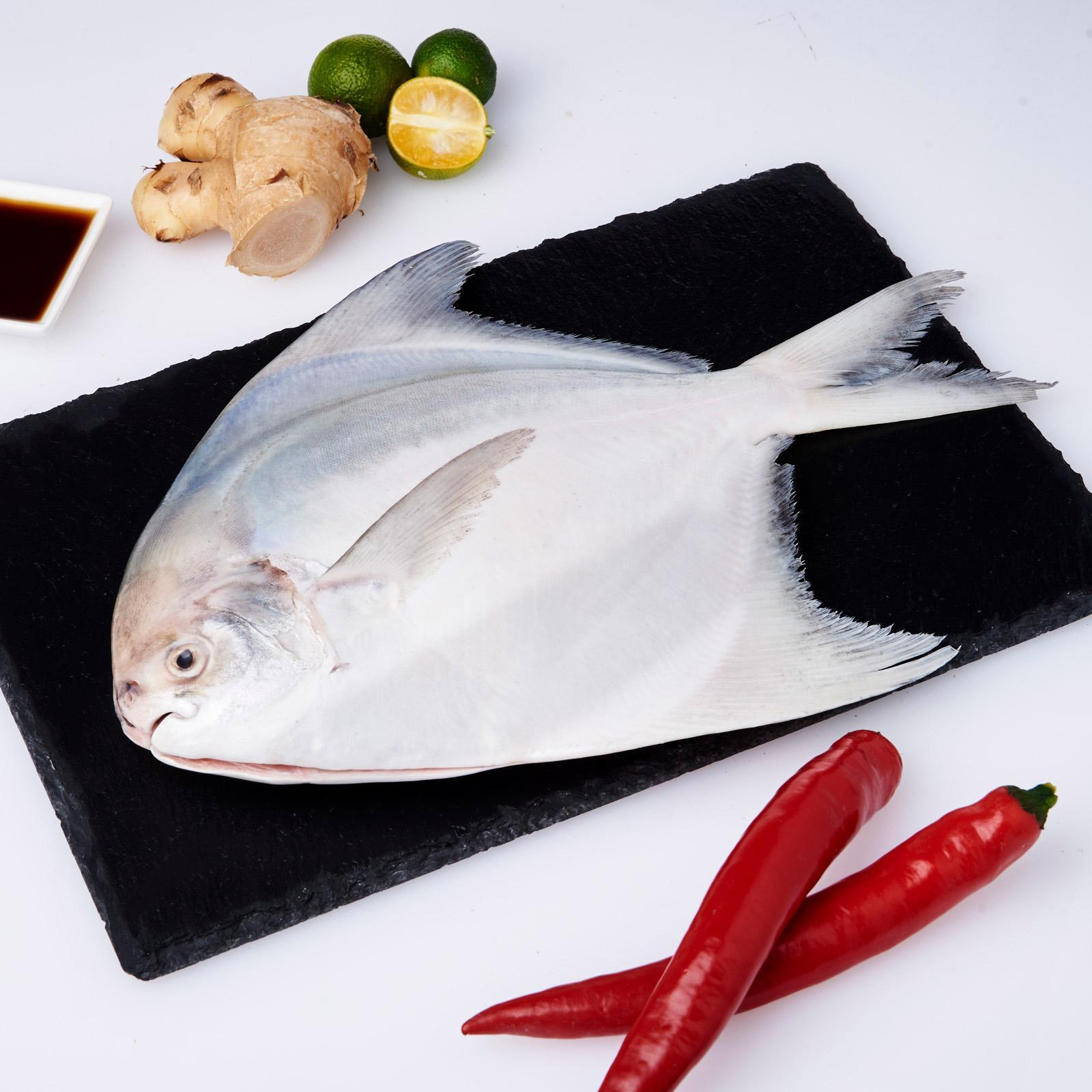 Serve By Hai Sia Seafood - Fresh Chinese Pomfret (cleaned And Gutted) By Redmart.