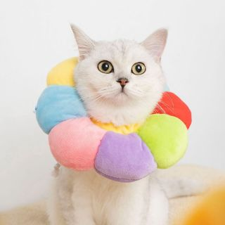 GWJ3360 Vết Thương Chống Liếm Không Thấm Nước Chống Cắn Con Chó Con Chó Con Mèo Con Đội Đầu Mặc Dễ Dàng Chuỗi Hạt Bông Mèo Nón Vòng Cổ Mèo, Đồ Dùng Cho Thú Cưng Phụ Kiện Cho Chó Cổ Áo Elizabeth thumbnail