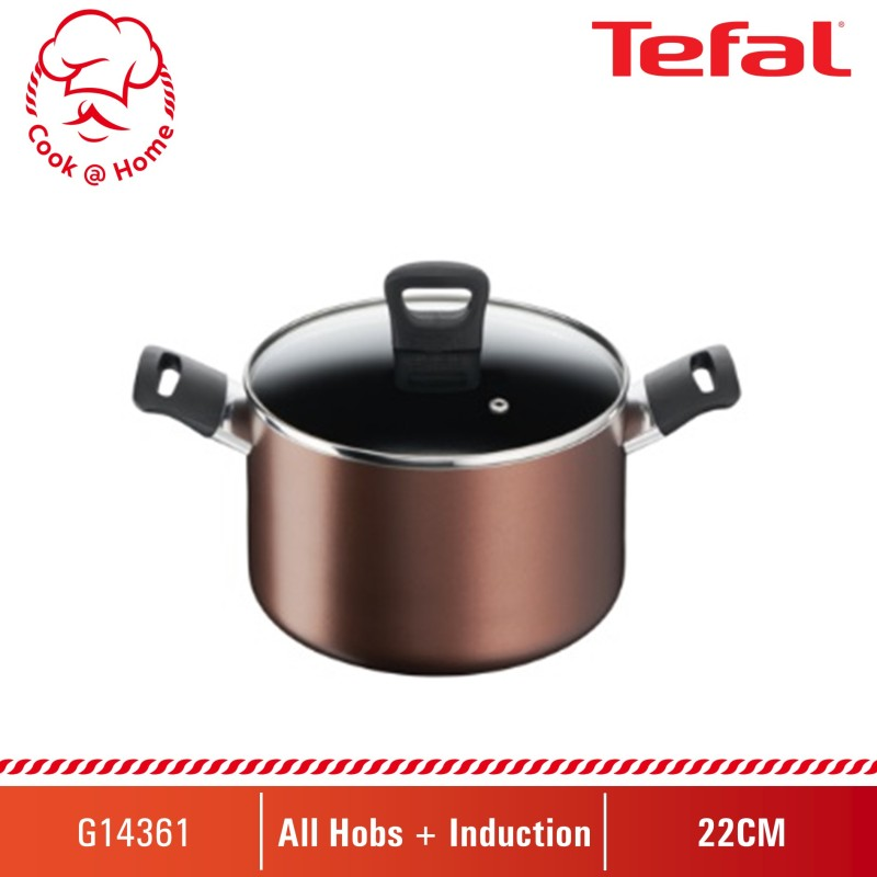 Tefal Day by Day Stewpot 22cm w/lid G14361 Singapore